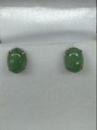 14K White Gold Burmese Jade Earrings