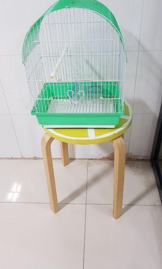 🚚 Bird cage- small