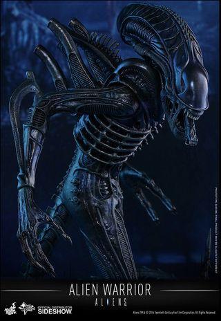 🚚 Hot Toys MMS354 Alien Warrior