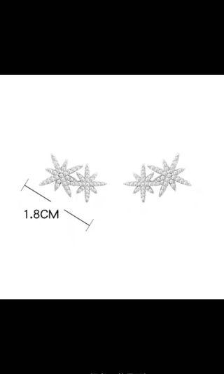 Star meteorite earrings