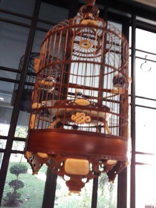 🚚 Mata Puteh Cage can trade good song bird n cage the white is real