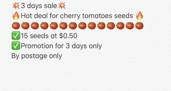 Cherry tomatoes seeds promotion/ seeds