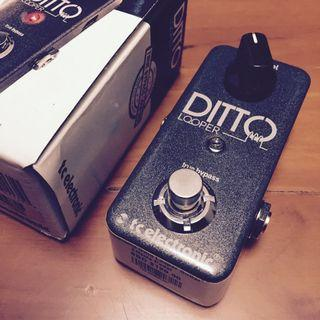 Ditto Looper TC Electronic Guitar Effects Pedal
