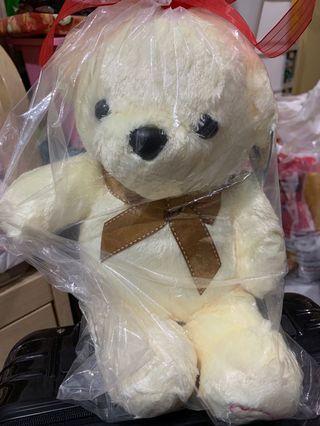 韓國熊啤啤 生日禮物 紀念日禮物 Birthday gift anniversary gift teddy bear