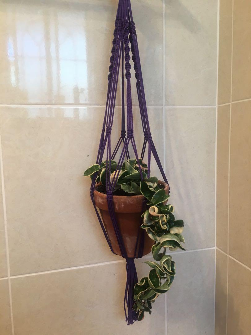Macrame Plant Hangers Colourful New