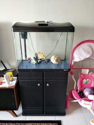 🚚 Fish Tank