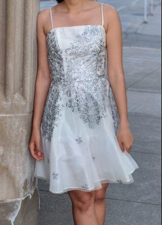 Danna Nicole Dress