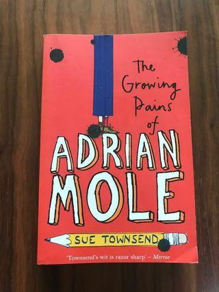 🚚 The Growing Pains of Adrian Mole