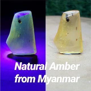 Natural Amber from Myanmar
