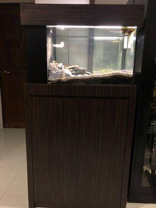 $100 QUICK DEAL!!! 2.5x1.5x1.5 Custom Tank with Cabinet