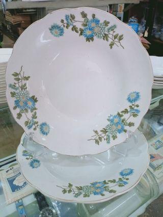 Vintage Plate- bunga carnations