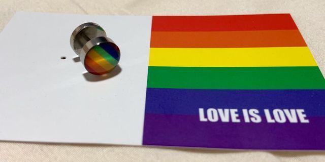 Rainbow stud earring