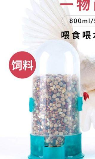Free 免費 送 寵物 餵食器 鳥類 雀粟 白鴿 鸚鵡 倉鼠