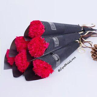 BN Single Stalk Carnation in Kraft paper