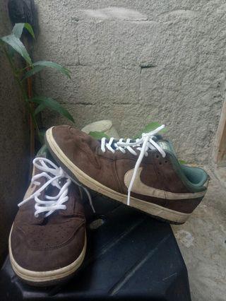 Sepatu Nike 6.0 Casual