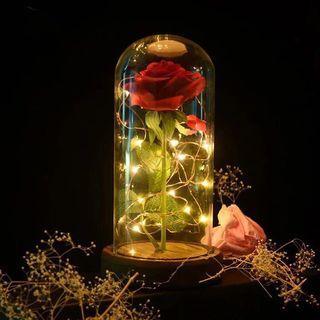 情人節禮物LED夜燈永生花假花DIY玻璃罩生日禮品玫瑰花景觀花擺件