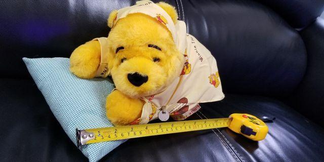 正版 Winnie The Pooh搖擺公仔