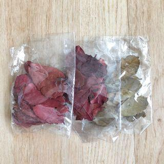 Dried leaves decoration