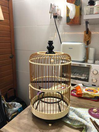 Puteh Balaca cage