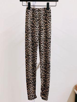 🚚 韓製 豹紋內搭褲