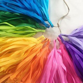 Rainbow Paper Tassel
