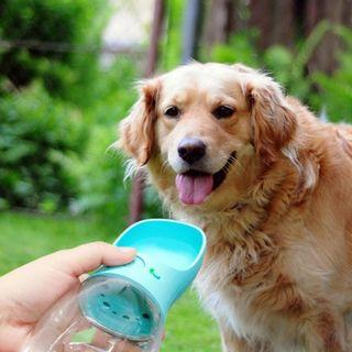 🚚 Automatic water dispenser for dog water bottle
