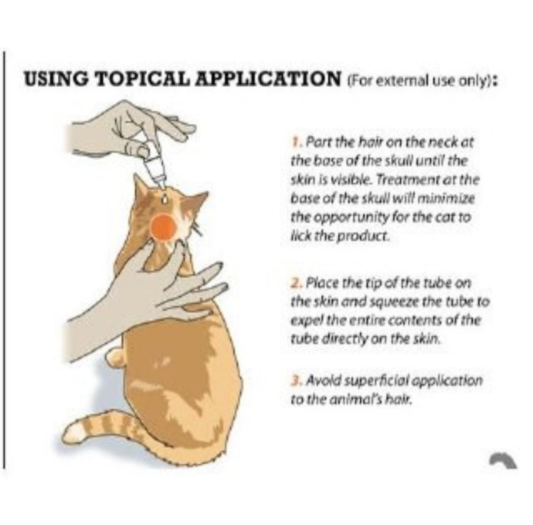 Spot On Flea Tick Treatment Medicine Cats/Dogs👍
