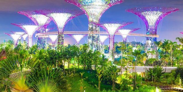 🚚 Last 2Adult Garden By The Bay with OCBC SkyWay
