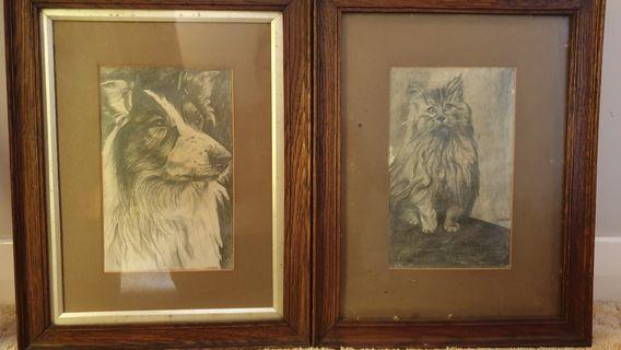 Original F. Webb sketches Cat and Border Collie