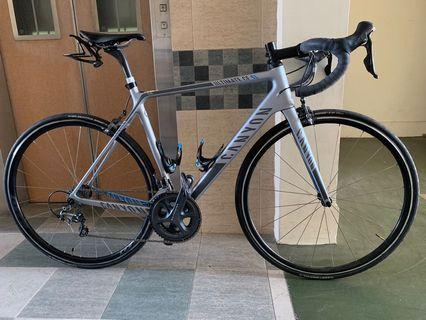 Canyon Ultimate CF SL 9.0 and Flo 30 Wheelset (installed with Powertap G3 Hub)