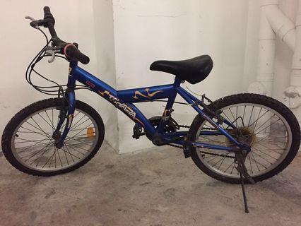 Tahara mountain bike