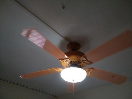 🚚 Ceiling Fan with Light
