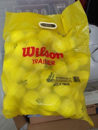 🚚 Wilson trainer tennis balls