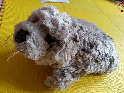 Boneka Anjing laut