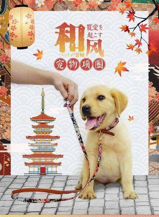 🚚 Small dog collar medium dog cat collar