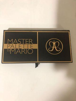 Master pallate by Mario, Anastasia Beverly Hills