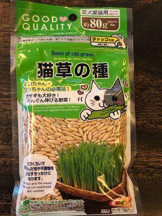日本貓草種子(小麥草)