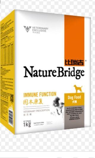 Dogs Food Nature Bridge