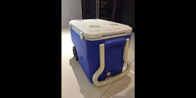 Coleman's cooler