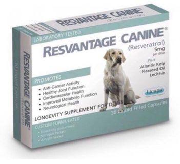 Resvantage Canine 白藜蘆筍
