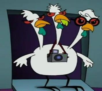 🚚 我是三頭鵝🦢