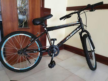 9ead2679778 Aleoca Mountain Bicycle 《2》 (for kids!)