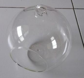 Terrarium glass 15cm diameter