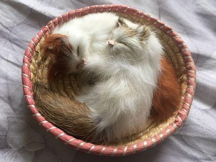"""Free to cats lover, accessories for two cats, size: 5.5"""" diameter"""