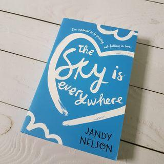 🚚 The Sky Is Everywhere || Jandy Nelson  #ENDGAMEyourEXCESS
