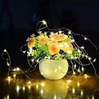 LED Fairy Lights (Battery Operated)