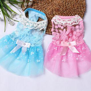 Brand New Pet's Dresses For Sales