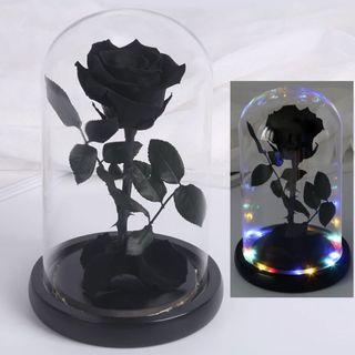 🚚 INSTOCK ENCHANTED BLACK PRESERVED ROSE WITH LIGHTS AND GLASS DOME