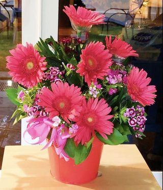 Flowers - Flowers in a Bucket
