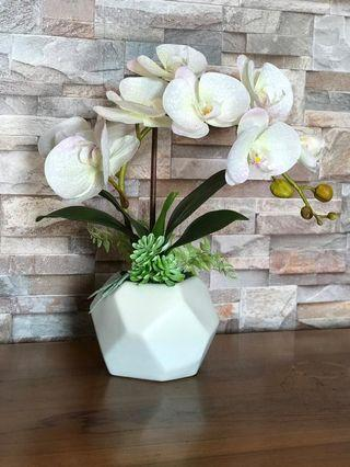 Gubahan Orkid